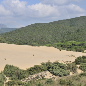 Dunes de Piscinas (photo Ivo Piras)