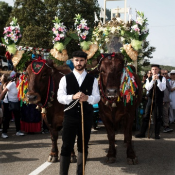 Saint Anthony's festival, oxcart with the holy (foto Digital Photonet Arbus)